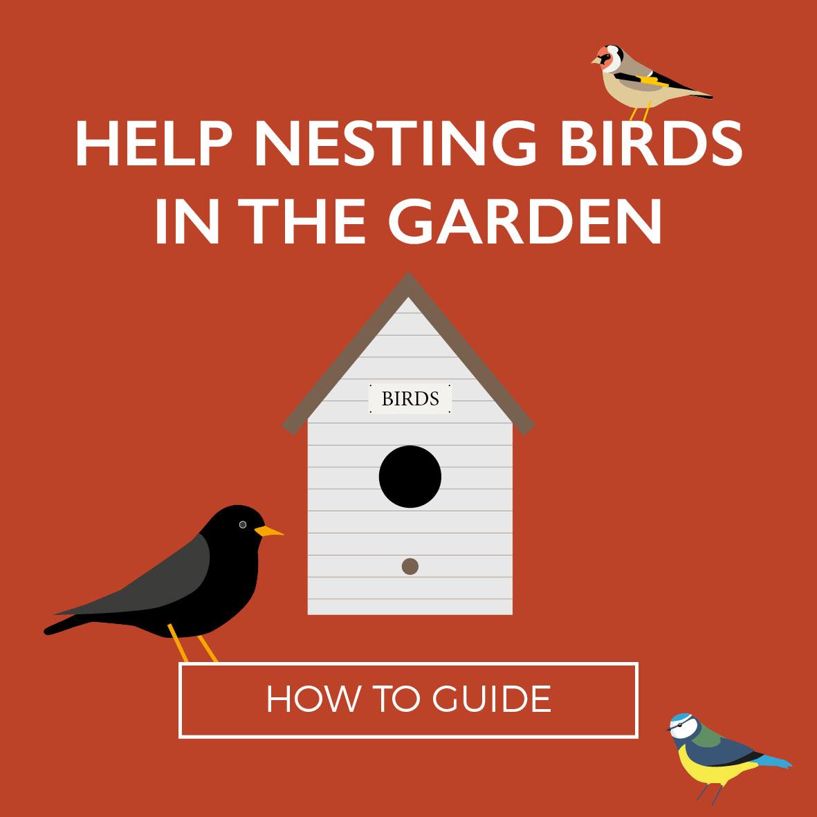 Perrywood-NestingBirds-Web