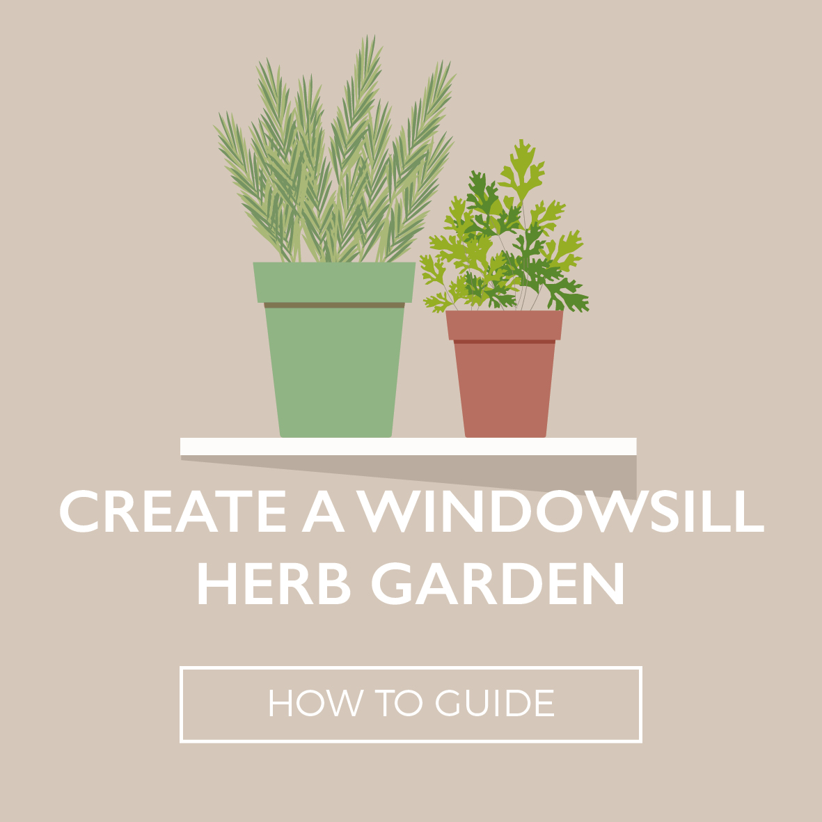 Perrywood-WindowsillHerbGarden2018