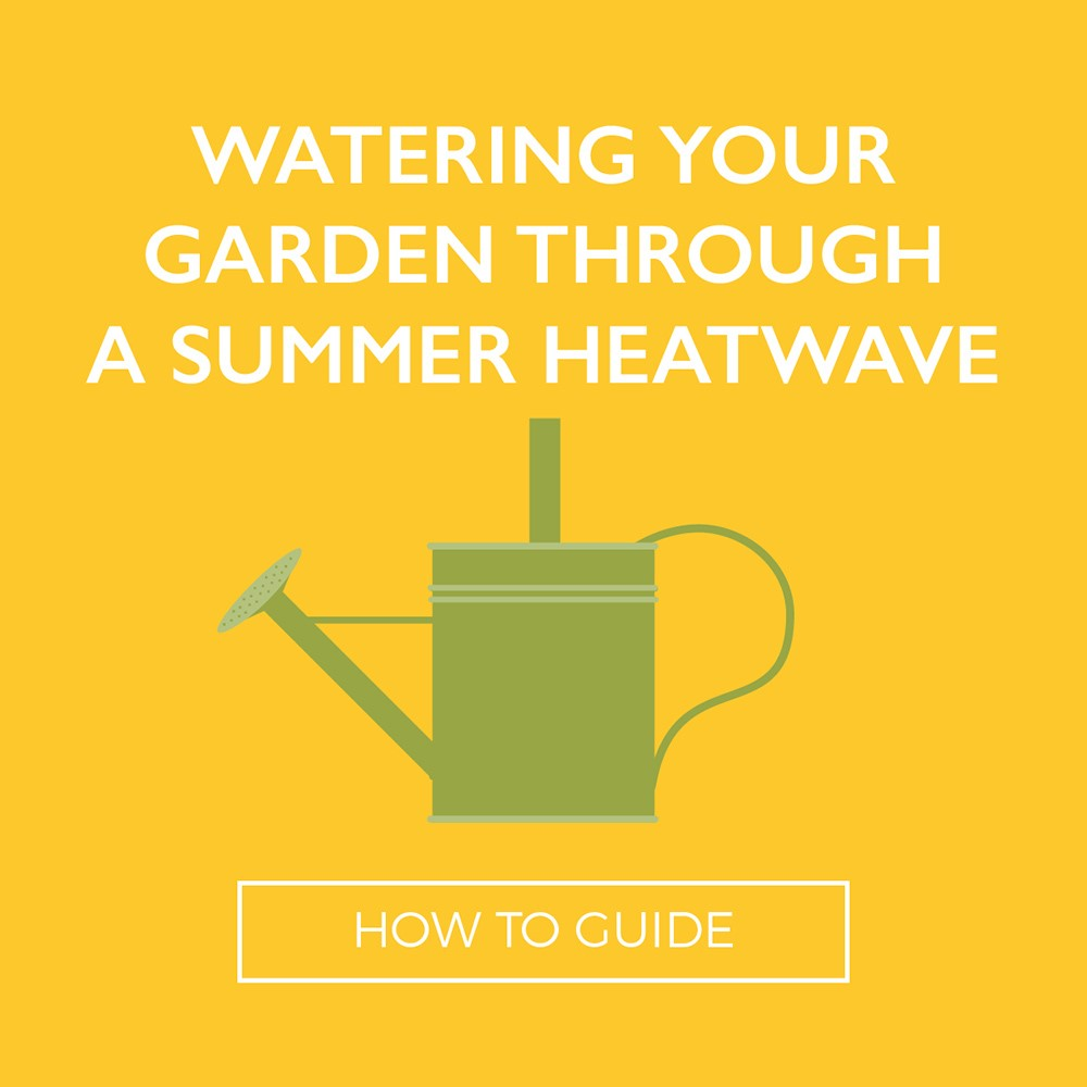 Watering-Your-Garden (002)