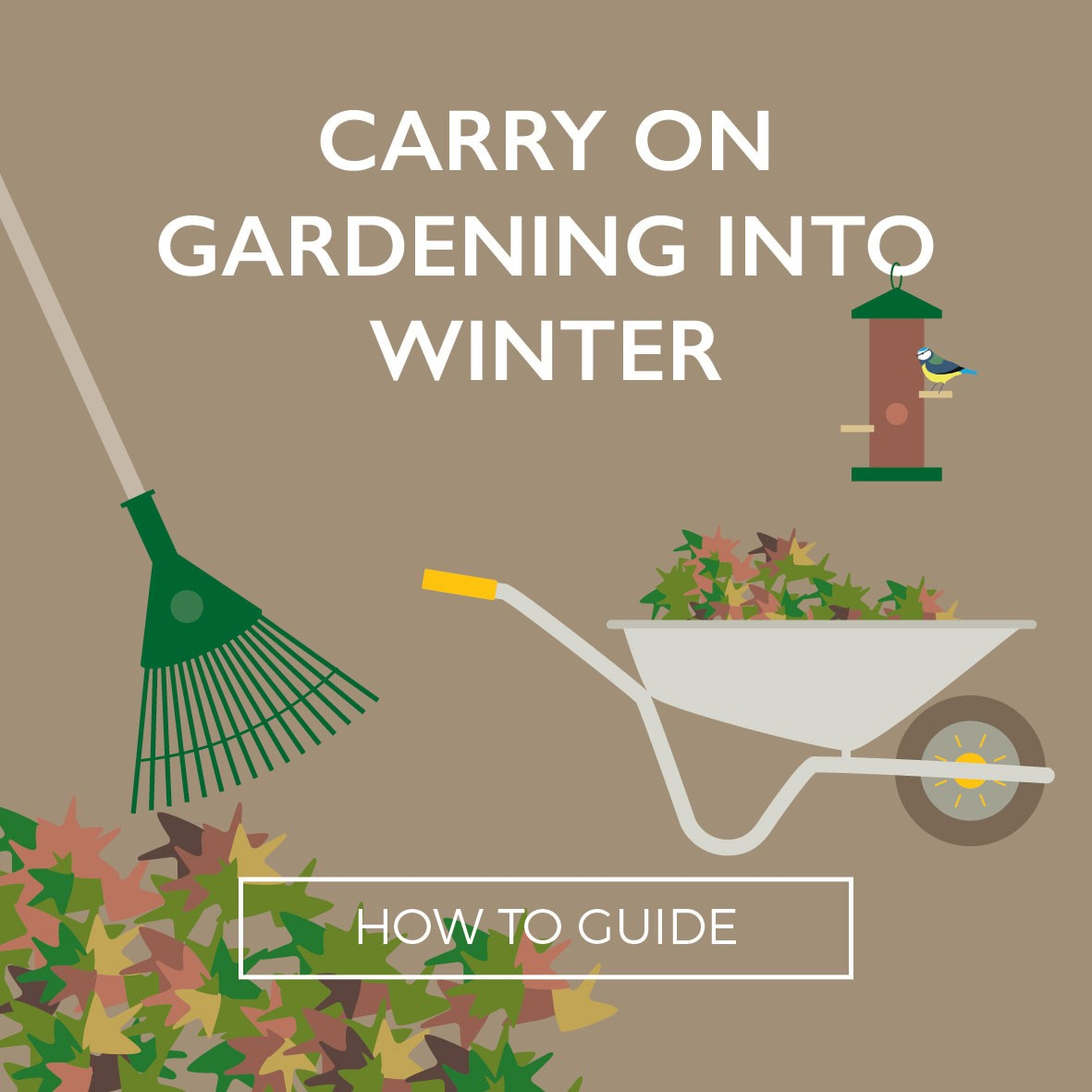 Carry on Gardening into winter